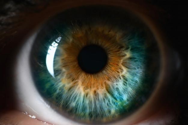 o que é a retina do olho